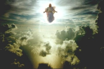 Judgment Day – What to Expect When the Rapture Comes